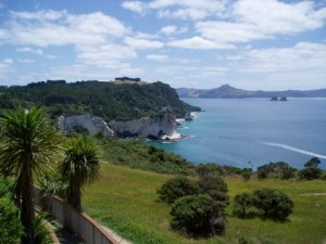 Scenic Coromandel walk in New Zealand